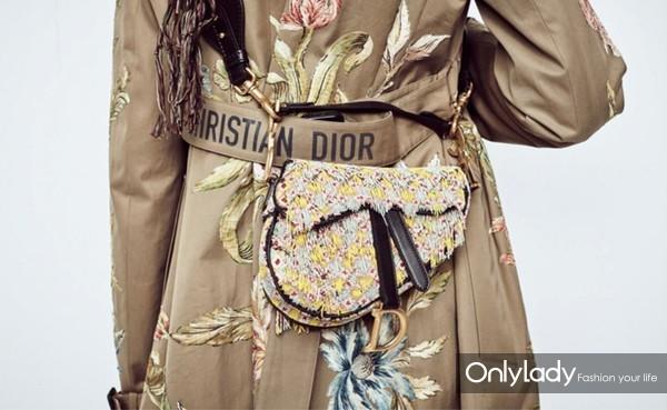 Dior迪奥马鞍包